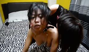 Lesba a une asiatique épicée en laisse