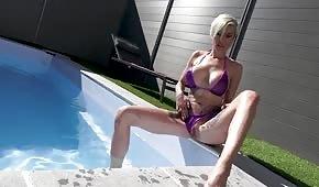 Chienne cool caresse dans la piscine
